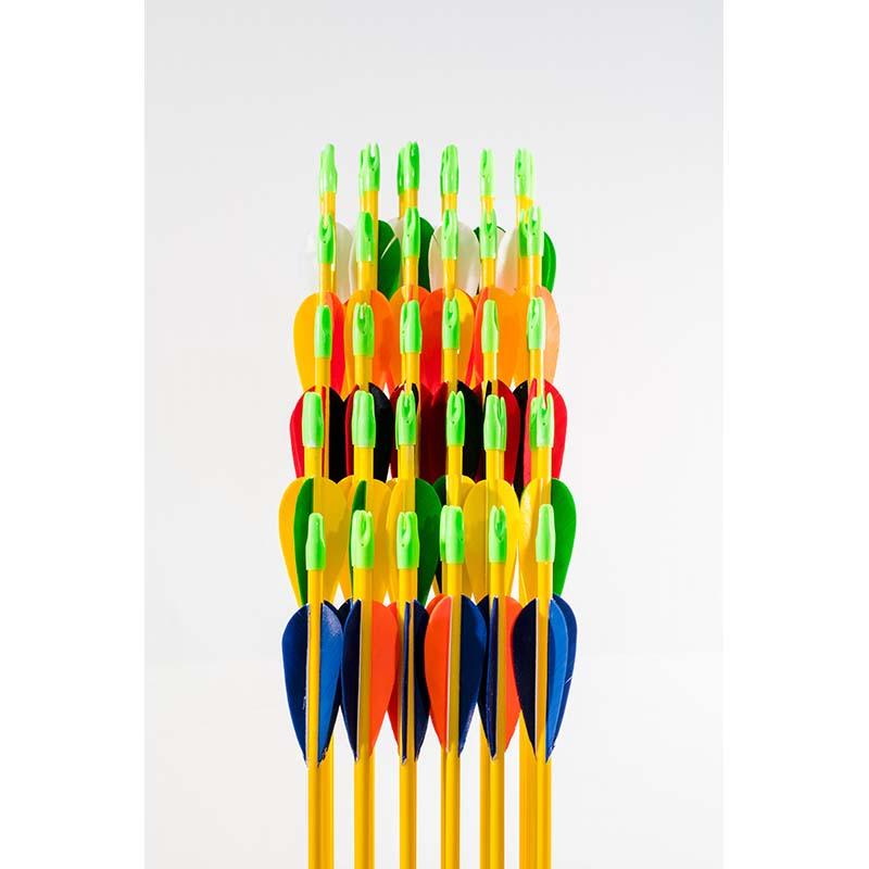 Hi-Impact Fiberglass Arrows with Feathers